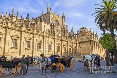 Horse Drawn Carriages In Seville Poster