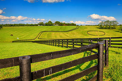 Horse Farm Fences Poster