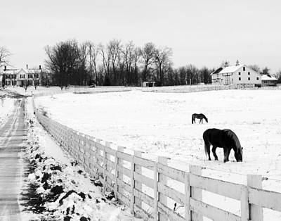 Horse Farm In Winter Poster by Jim Culler