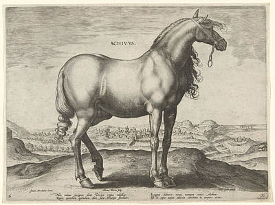 Horse From Greece Achivus, Hieronymus Wierix Poster by Hieronymus Wierix And Philips Galle