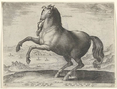 Horse From Southern Italy Appulus, Hieronymus Wierix Poster by Hieronymus Wierix And Philips Galle