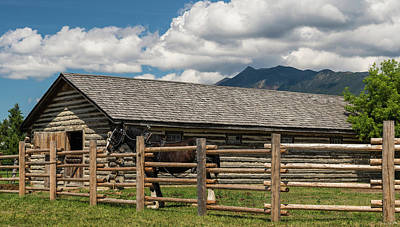 Horse In Barn, Rocky Mountains, Fort Poster by Panoramic Images