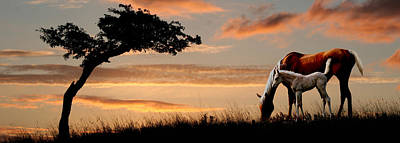 Horse Mare And A Foal Grazing By Tree Poster by Panoramic Images