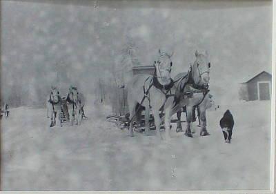 Horse Team Cutter Poster by Mavis Reid Nugent