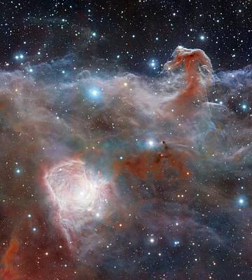 Horsehead Nebula Poster by Robert Gendler