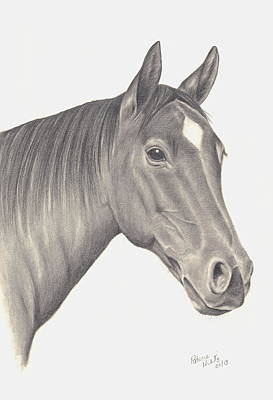 Poster featuring the drawing Horses Beauty by Patricia Hiltz
