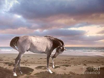 Horses Dreamy Surreal Fantasy Horse Beach North Carolina  Poster by Kathy Fornal