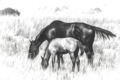 Horses Grazing Poster by Peter Herzog