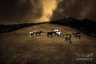 Horses Of The Moon Mill Valley California 5d22673 Sepia Poster by Wingsdomain Art and Photography