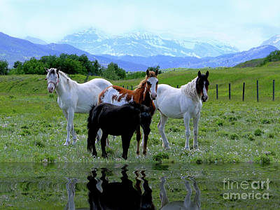 Horses Reflected Poster by Al Bourassa