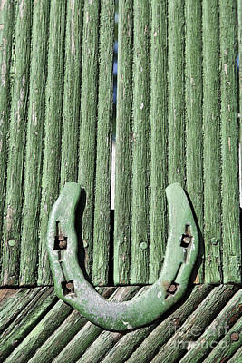 Horseshoe Nailed To A Green Door Poster by Robert Preston