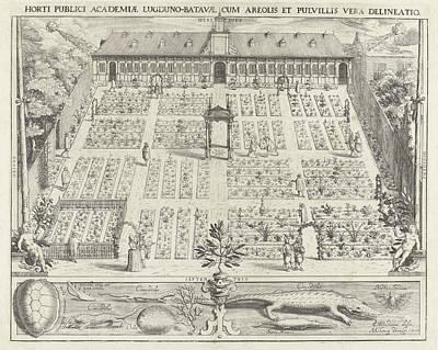 Hortus Botanicus Of Leiden University, The Netherlands Poster