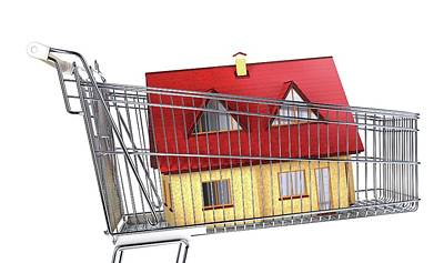 House Inside A Shopping Trolley Poster by Leonello Calvetti