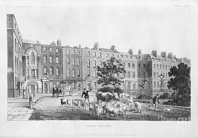 House Of Joseph Banks, 19th Century Poster