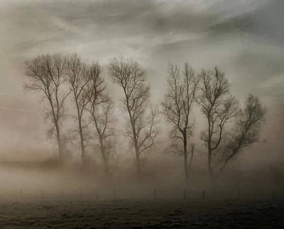 How Nature Hides The Wrinkles Of Her Antiquity Under Morning Fog And Dew Poster