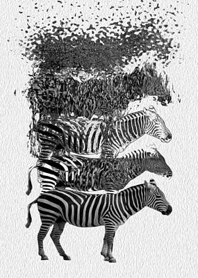 How To Make A Zebra Poster