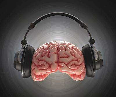 Human Brain And Headphone Poster