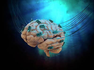 Human Brain With Cables And Microchips Poster