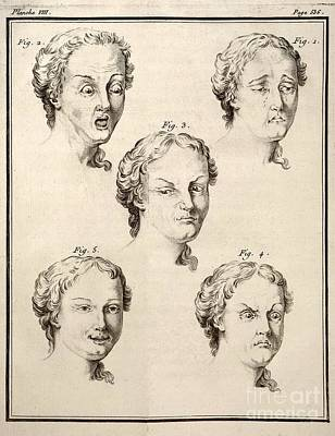 Human Emotions And Expression, 1749 Poster by Paul D. Stewart
