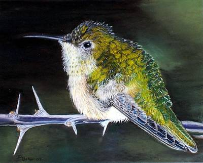Poster featuring the painting Hummingbird by Debbie Baker