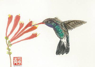 Hummingbird Flight Poster