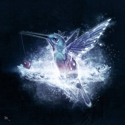 Hummingbird Print Poster by Cameron Gray