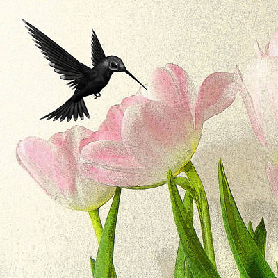 Hummingbird Poster by Sharon Lisa Clarke