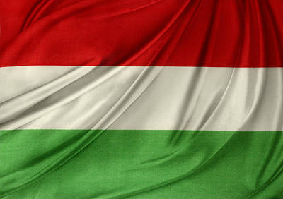 Hungary Flag Poster by Les Cunliffe