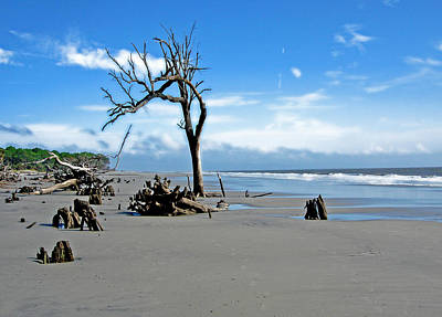 Poster featuring the photograph Hunting Island - 1 by Ellen Tully
