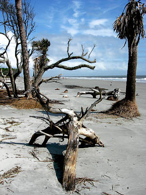 Poster featuring the photograph Hunting Island - 3 by Ellen Tully