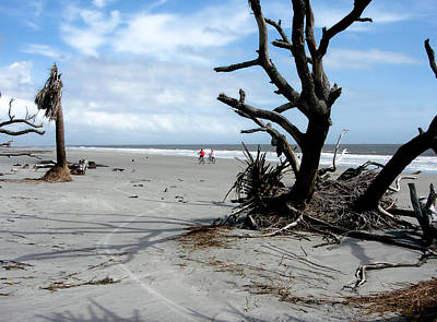 Poster featuring the photograph Hunting Island - 5 by Ellen Tully