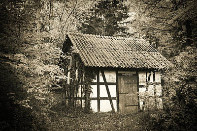 Hut In The Forest Sepia Vintage Style Poster