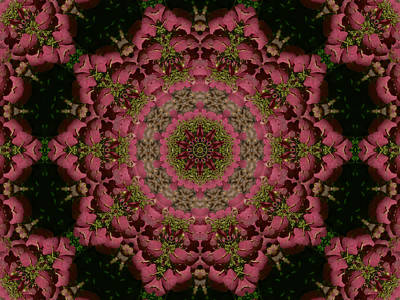 Hydrangea Mandala Mauve Poster by MM Anderson