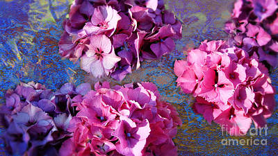 Hydrangea Mix Poster by Beverly Guilliams
