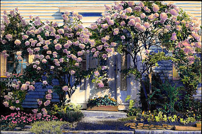Hydrangeas Poster by Cindy McIntyre