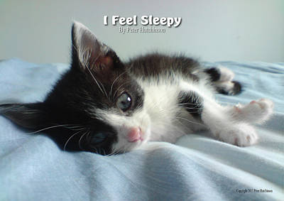 I Feel Sleepy Poster by Peter Hutchinson