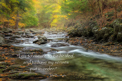 I Go To Nature Poster by Bill Wakeley