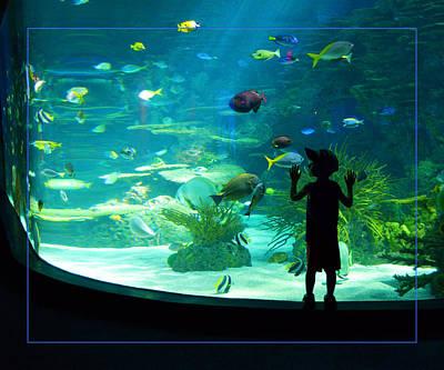 I See Fish Poster