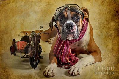 I Want To Ride Poster by Domenico Castaldo