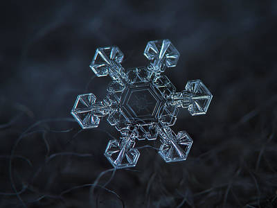 Snowflake Photo - Ice Crown Poster by Alexey Kljatov
