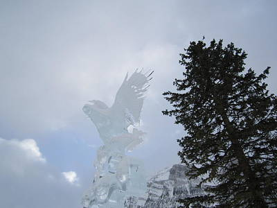 Ice Eagle Poster by Cathy Long