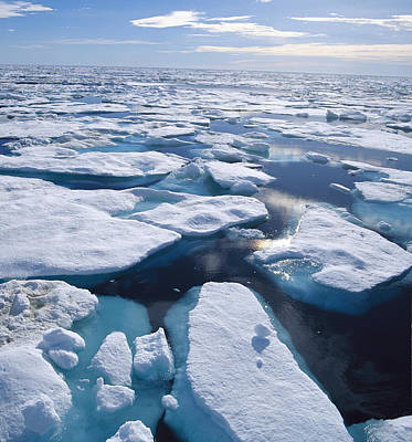 Ice Floes In Arctic Northwest Territories Poster by Konrad Wothe