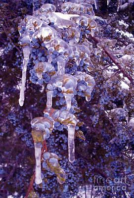 Ice In Purple Poster by R McLellan
