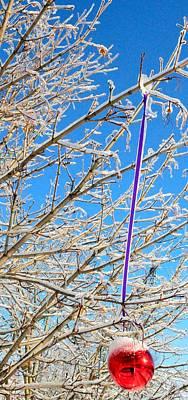 Ice Ornament Poster by Jeffrey J Nagy