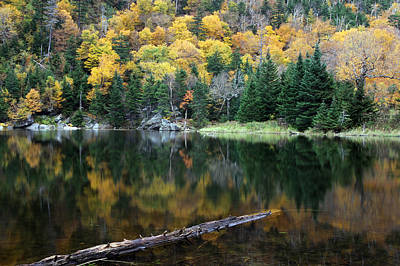 Idyllic Vermont Autumn Glory Poster