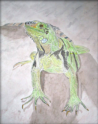 Poster featuring the painting Iguana by Linda Feinberg