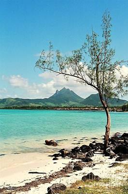 Ile Aux Cerfs Mauritius Poster by David Gardener