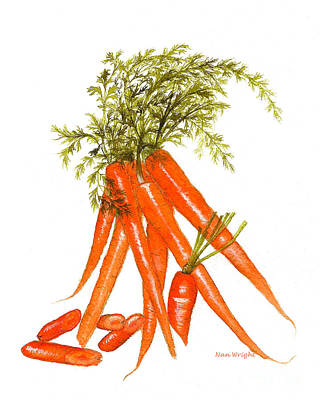 Illustration Of Carrots Poster by Nan Wright