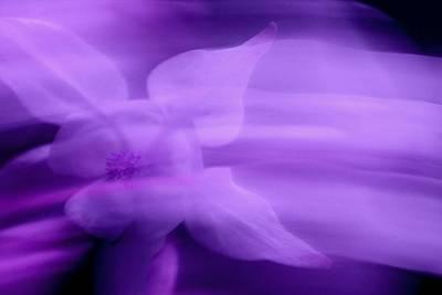 Imagination In Purple Poster