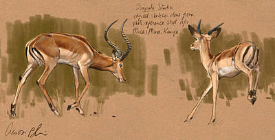 Poster featuring the digital art Impala Studdies by Aaron Blaise